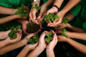 kids-planting-hands-800-1